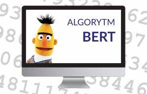 ALGORYTM BERT